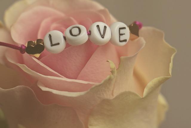 šperk na růži