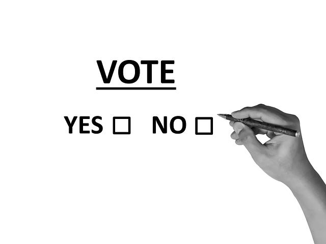 volby, hlasování