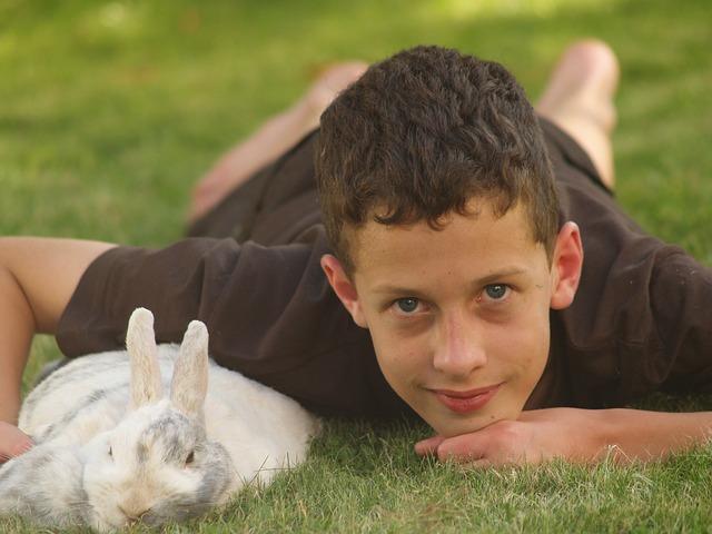 chlapec a králík