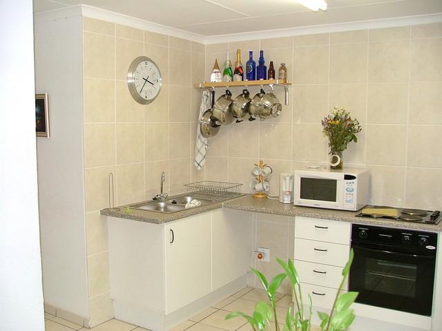 malá kuchyně v paneláku s kytičkou a mikrovlnkou.jpg